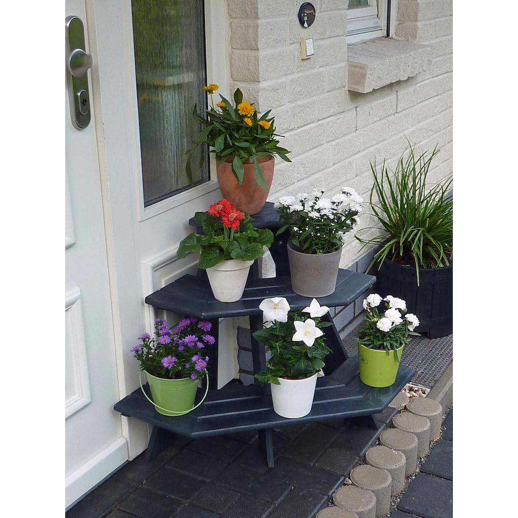 promadino Blumenständer »Blummentreppe Anja«, Eckelement, BxTxH: 87x59x62 cm