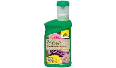 Neudorff Pflanzenstärkungsmittel »BK Vitalkur für Rosen«, 0,3 l kaufen