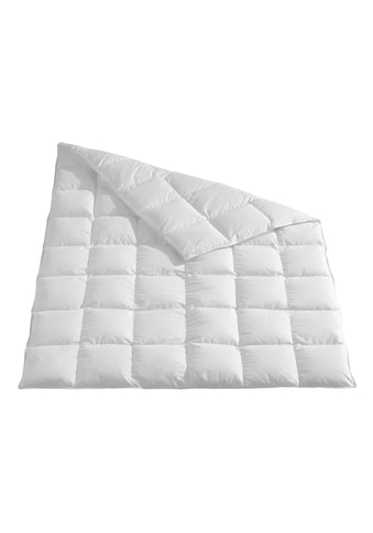 TRAUMSCHLAF Daunenbettdecke »Arktis«, normal, (1 St.), Daunendecke medium kaufen