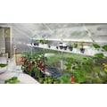 KGT Regal für Gewächshaus Orchidee IV, BxT: 429x26 cm