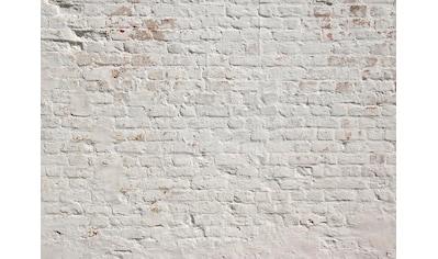 living walls Fototapete »Klinker Backstein«, 350 x 255 cm kaufen