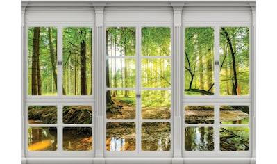 Consalnet Vliestapete »Sonnenwald Fensterblick«, verschiedene Motivgrößen, für das Büro oder Wohnzimmer kaufen