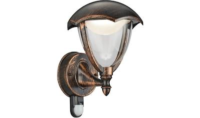 TRIO Leuchten,LED Außen - Wandleuchte»GRACHT«, kaufen