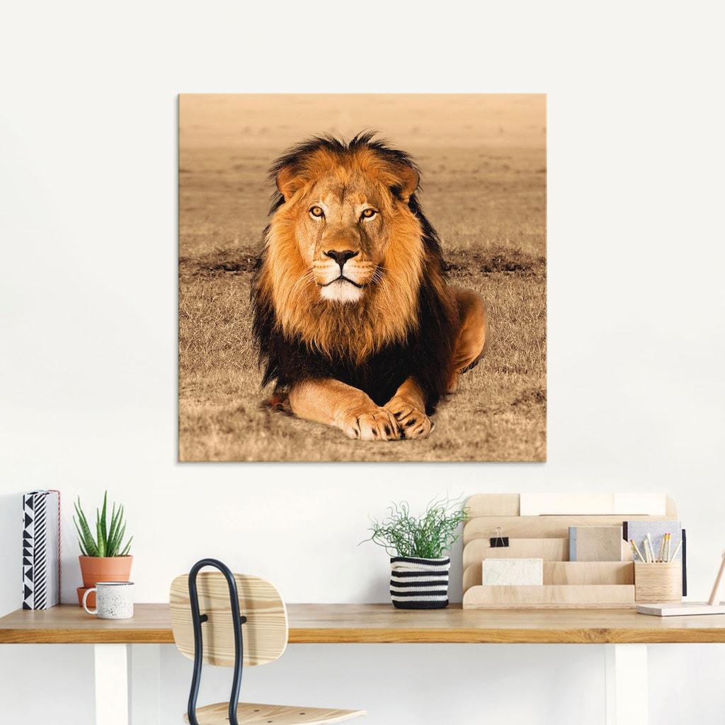 Artland Glasbild »Löwe«, Wildtiere, (1 St.)