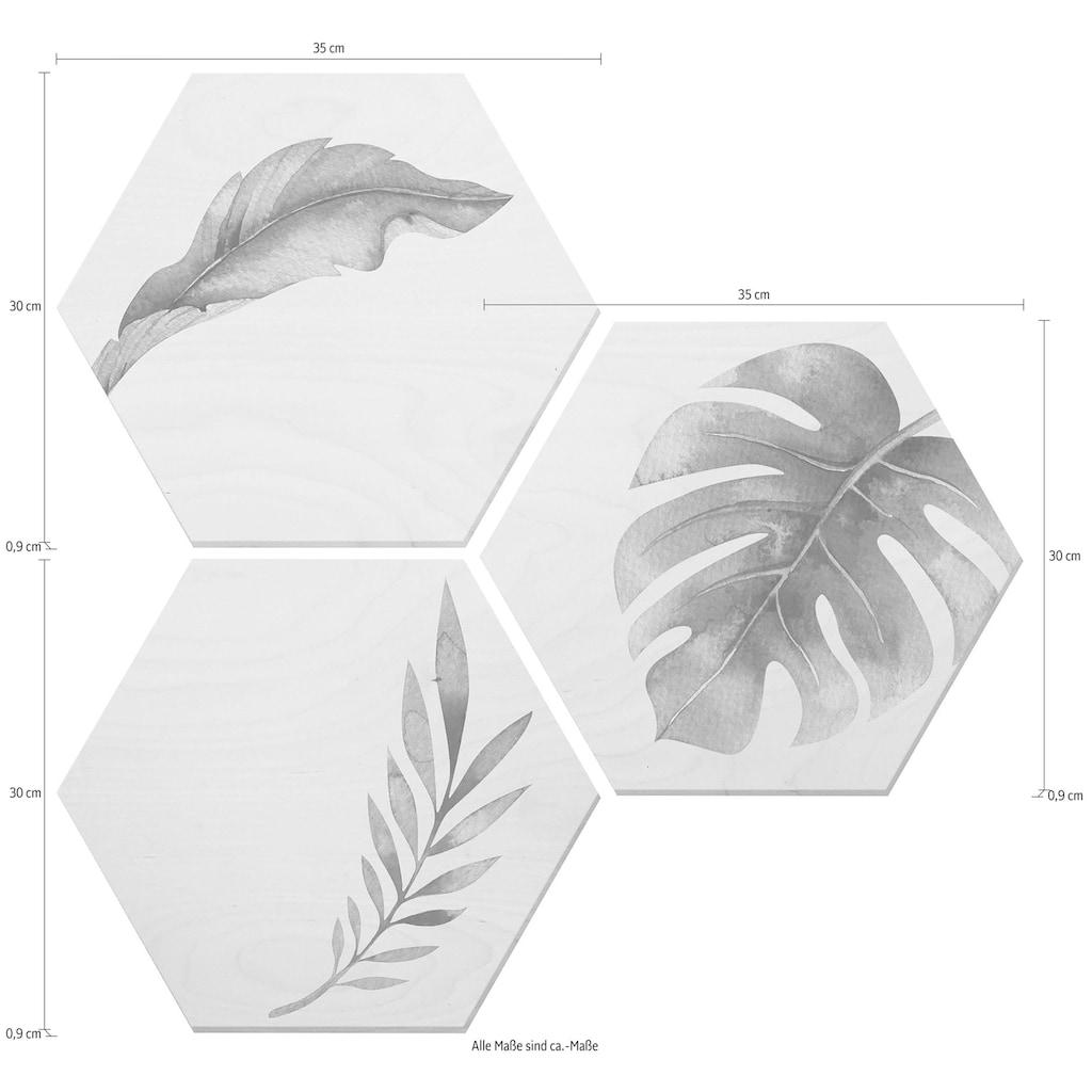 Wall-Art Alu-Dibond-Druck »Kvilis - Dschungel 04«, (Set)