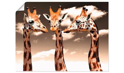 Artland Wandbild »Giraffe_sepia«, Wildtiere, (1 St.), in vielen Größen & Produktarten... kaufen