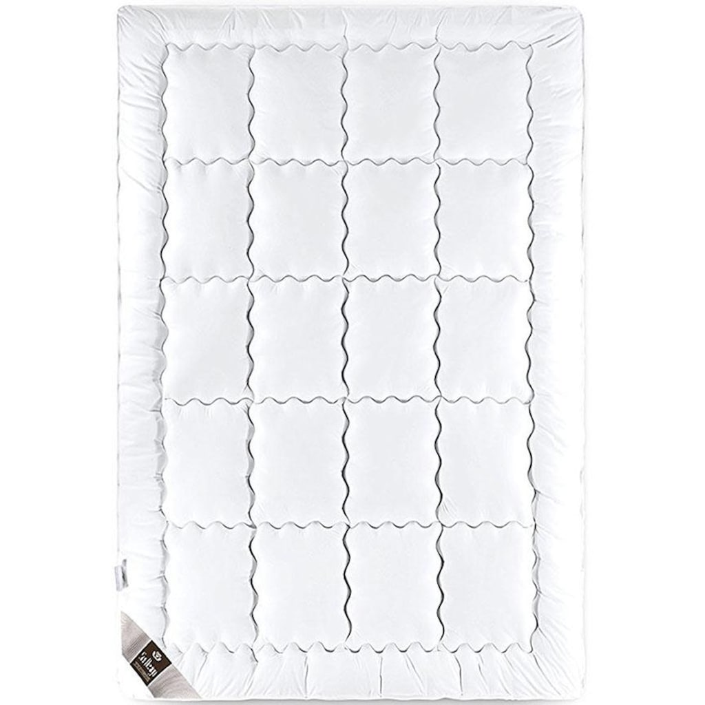 SEI Design Kunstfaserbettdecke »SWAN DE LUXE«, warm, Bezug 100% Baumwolle, (1 St.)