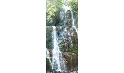 MySpotti Spritzschutz »fresh F2 Cliff«, 90 x 210 cm kaufen