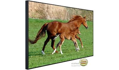 Papermoon Infrarotheizung »Pferde«, sehr angenehme Strahlungswärme kaufen