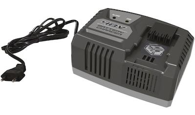 ALPINA GARTEN Schnellladegerät , 2 Ah, 48 V, für Akku BT 2048 Li und BT 4048 Li kaufen