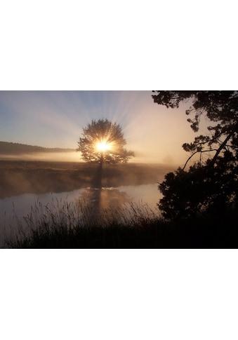Papermoon Fototapete »Fluss Sonnenaufgang«, Vliestapete, hochwertiger Digitaldruck kaufen