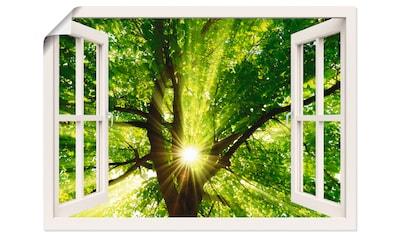 Artland Wandbild »Fensterblick Sonne strahlt durch Baum«, Bäume, (1 St.), in vielen... kaufen