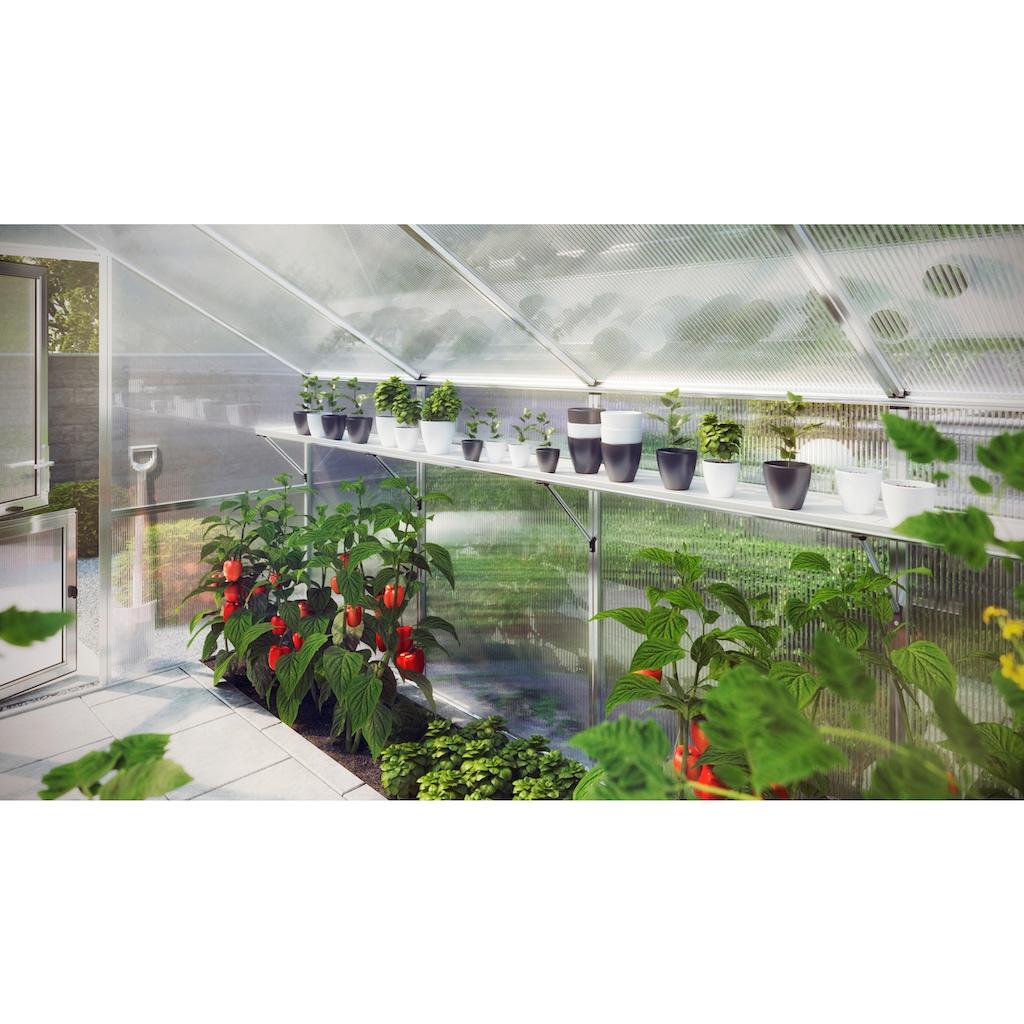 KGT Regal für Gewächshaus Flora III, BxT: 227x26 cm