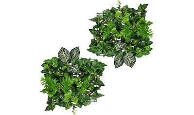 Creativ green Künstliche Zimmerpflanze »Blättermatte Philo-Efeumix«, 2er Set kaufen