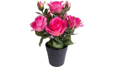 Botanic-Haus Kunstblume »Rosenbusch« kaufen