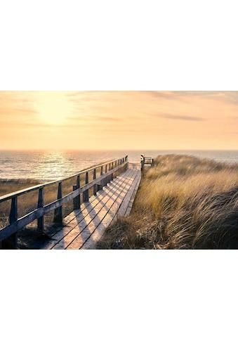 Reinders! Deco-Panel »Weg zum Strand«, 90/60 cm kaufen