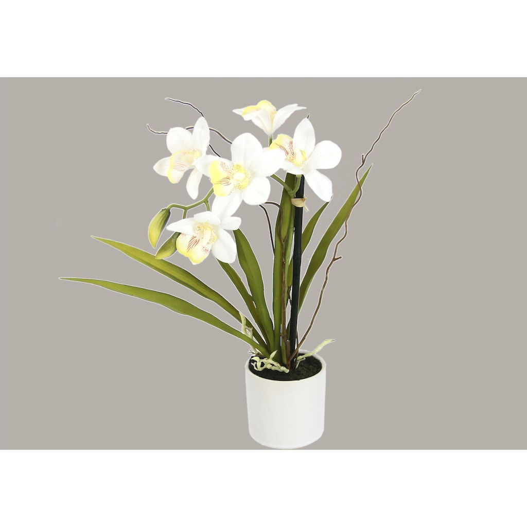 I.GE.A. Kunstorchidee »Orchidee«, im Keramiktopf