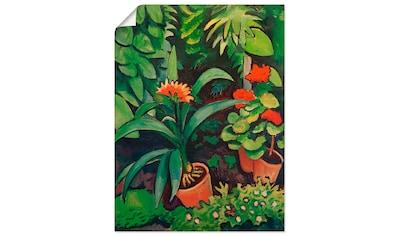 Artland Wandbild »Blumen im Garten, Clivia und Pelargonien« kaufen