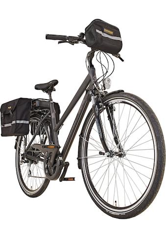 Prophete E-Bike »Entdecker e9000 Damen«, 8 Gang, Shimano, Acera, Heckmotor 250 W kaufen