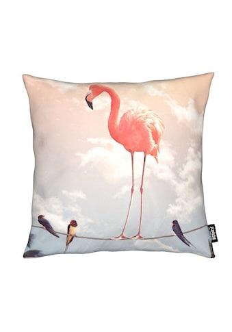 Dekokissen, »Flamingo and Friends«, Juniqe kaufen