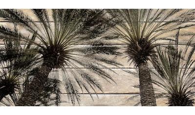 queence Holzbild »Vintage Palmen«, 40x80 cm kaufen