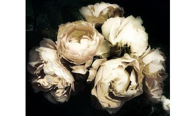 Leonique Acrylglasbild »Blüten« kaufen