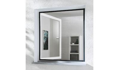 hecht international Insektenschutz-Fenster »MASTER SLIM«, anthrazit/anthrazit, BxH:... kaufen