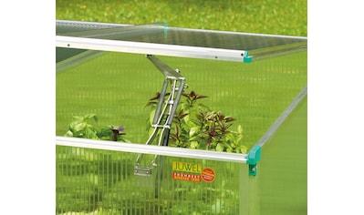 JUWEL Automatischer Fensteröffner passend für Frühbeete, stromfrei kaufen