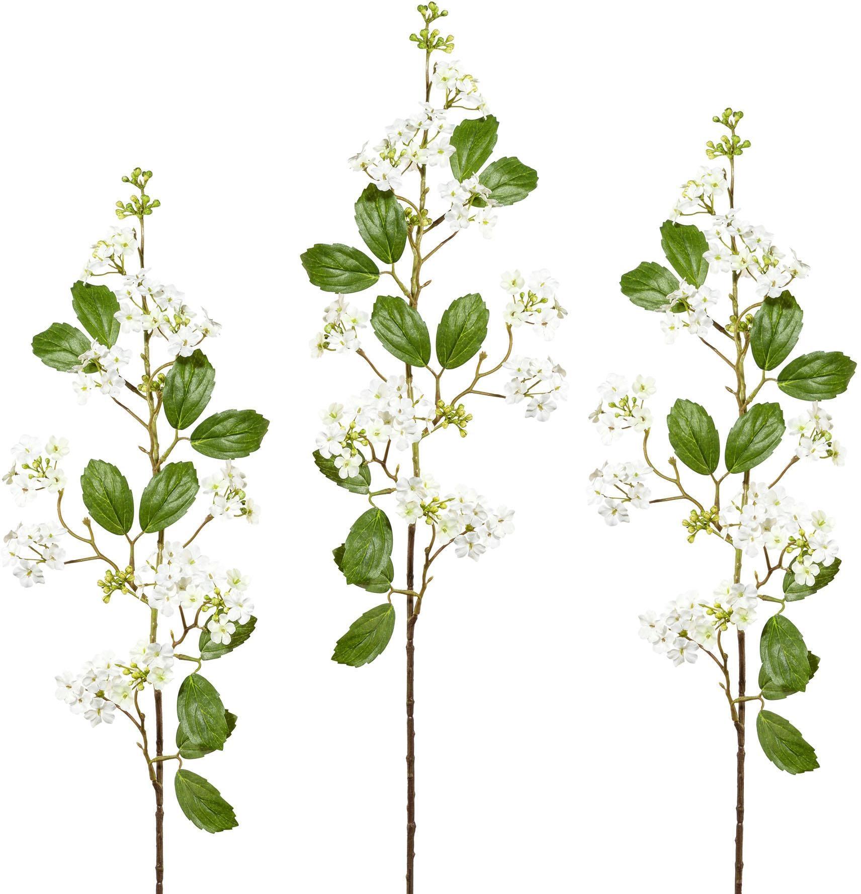 Kunstblume Wohnen/Accessoires & Leuchten/Wohnaccessoires/Kunstpflanzen/Kunstblumen