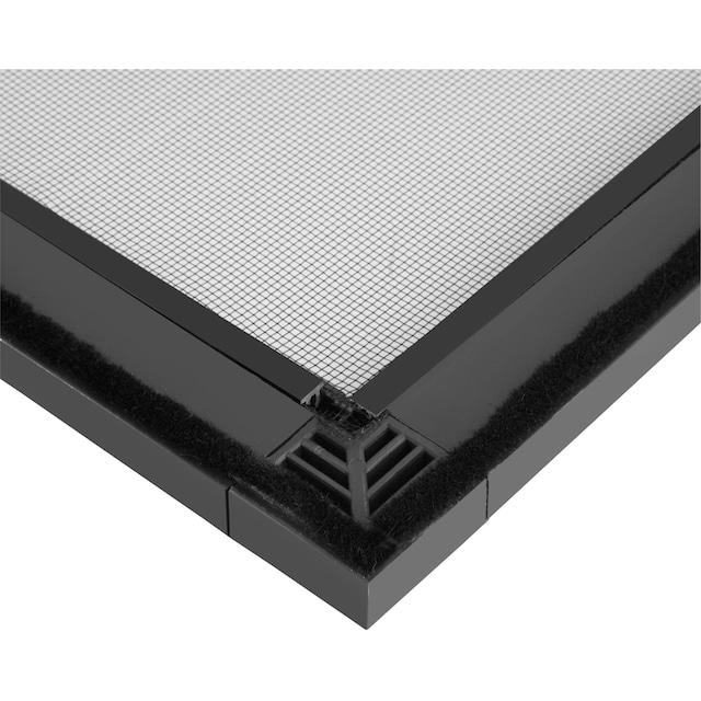 HECHT Insektenschutz-Tür »COMFORT«, anthrazit/anthrazit, BxH: 240x240 cm