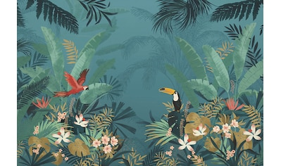 KOMAR Fototapete »Enchanted Jungle«, Größe: 368 x 248 cm kaufen