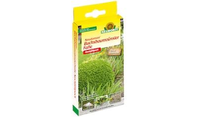 Neudorff Monitoringfalle »Neudomon Buchsbaumzünsler«, Nachfüllpack kaufen
