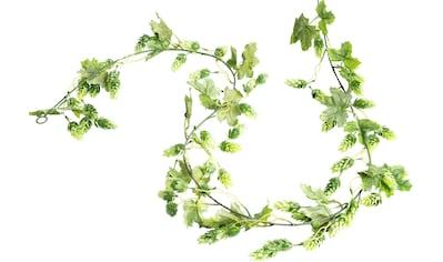 Botanic-Haus Kunstranke »Hopfengirlande« kaufen