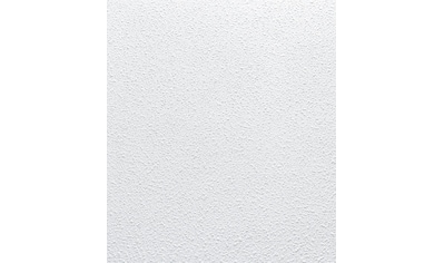 Dekor Paneele 50 x 50 cm Decken Styroporpaneele Deckenpaneele wei/ß 112 Platten = 28 m2 DECOSA Styropor Deckenplatten HAMBURG in Putz Optik