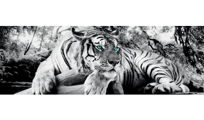 Reinders! Wandbild »Tigerblick Wandbild Tiger - Raubtier - Wandbild Wohnzimmer -... kaufen