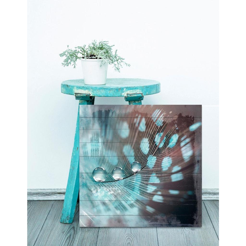 Home affaire Holzbild »Wassertropfen auf Feder«, 40/40 cm