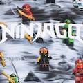 LEGO® Wear Kinderanzug »M-22796«