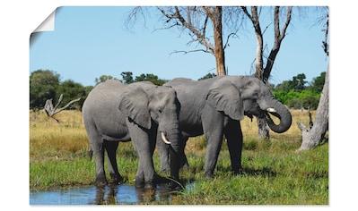 Artland Wandbild »Afrikanische Elefanten« kaufen