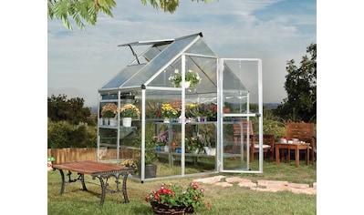 Palram Gewächshaus »Hybrid«, (Komplett-Set) kaufen