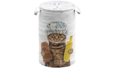 Sanilo Wäschekorb »Shower Cat«, 60 Liter, faltbar, mit Sichtschutz kaufen