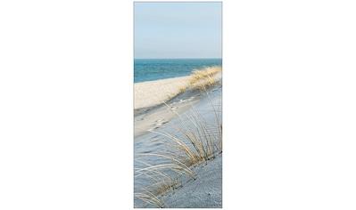 MySpotti Spritzschutz »fresh Sea Coast«, 90 x 210 cm kaufen
