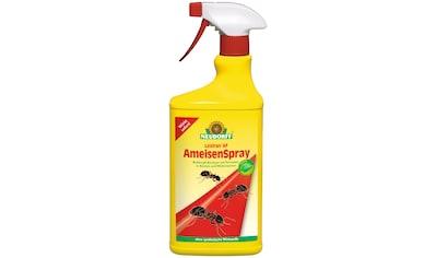 Neudorff Insektenspray »Loxiran AF« kaufen