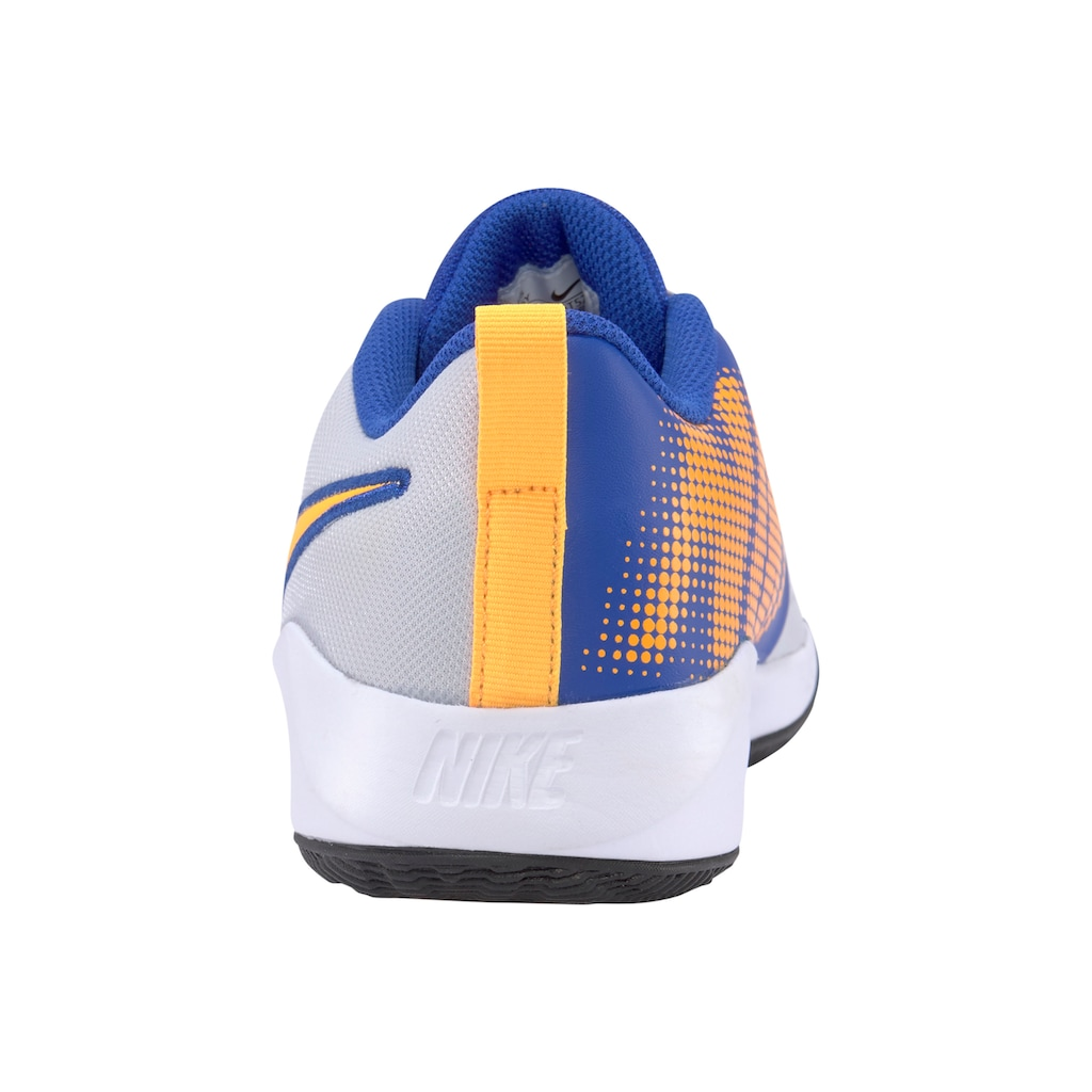 Nike Basketballschuh »Team Hustle Quick 2«