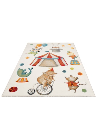 Kinderteppich, »Zirkus«, Lüttenhütt, rechteckig, Höhe 13 mm, maschinell gewebt kaufen