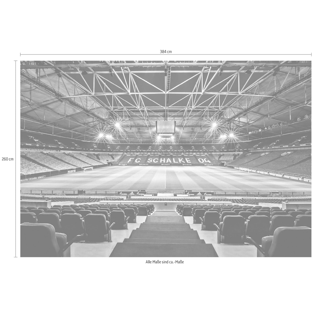 Wall-Art Vliestapete »Schalke 04 Arena Tribüne«