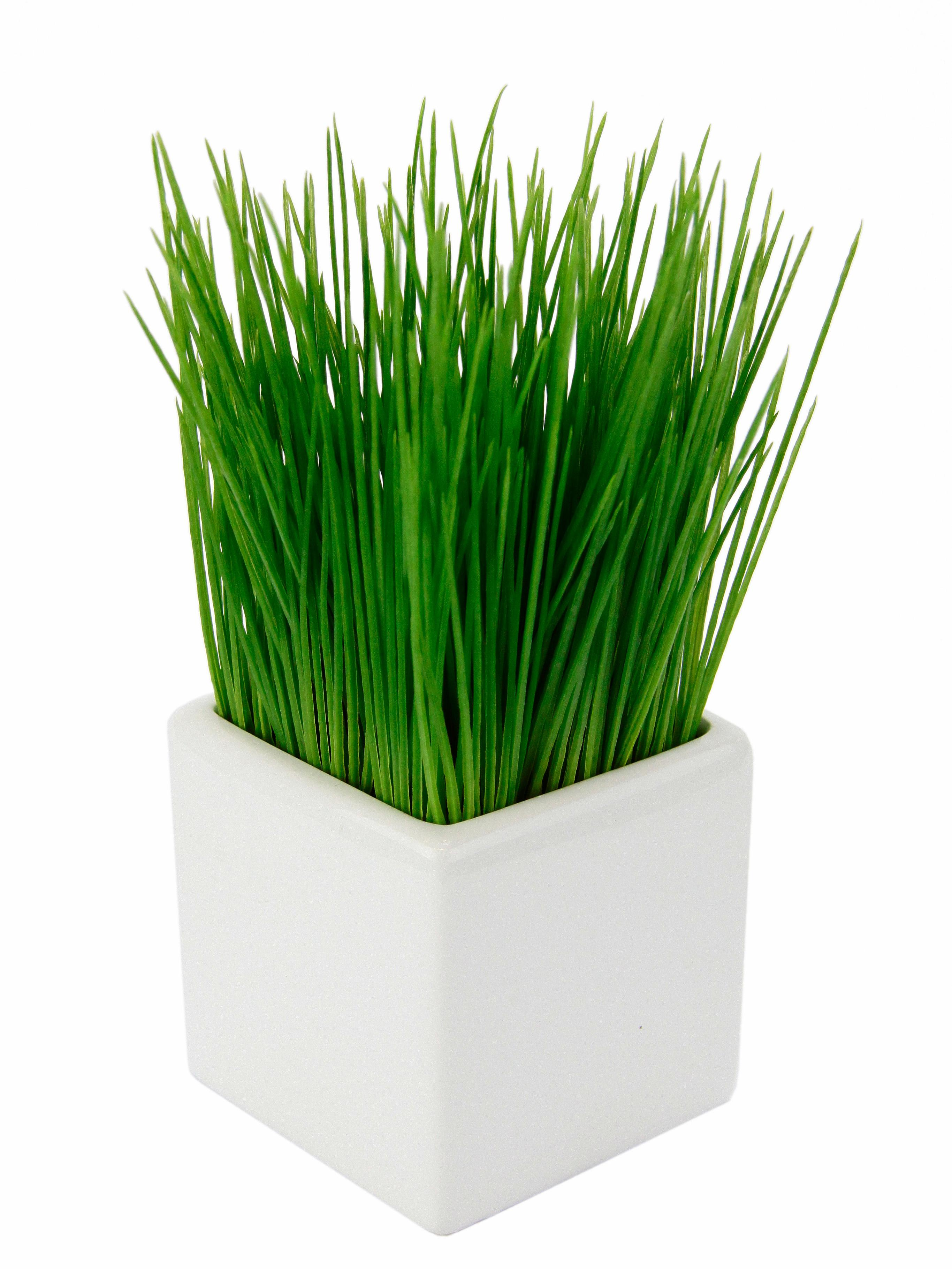Kunstpflanze Gras Technik & Freizeit/Heimwerken & Garten/Garten & Balkon/Pflanzen/Kunstpflanzen/Kunst-Gräser
