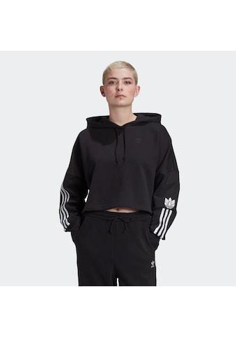 adidas Originals Hoodie »ADICOLOR 3D TREFOIL CROPPED« kaufen
