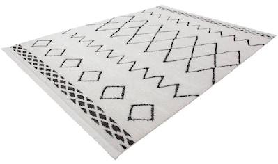 Teppich, »Agadir 310«, Kayoom, rechteckig, Höhe 23 mm, maschinell gewebt kaufen