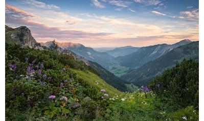 Komar Fototapete »Naturpark Allgäuer Hochalpen«, mehrfarbig-natürlich-bedruckt kaufen