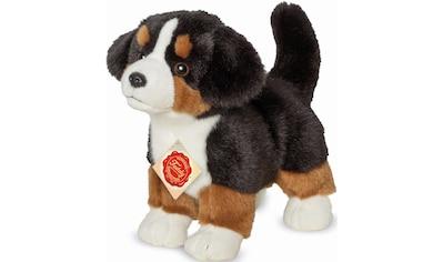Teddy Hermann® Kuscheltier »Berner Sennenhund, 23 cm« kaufen